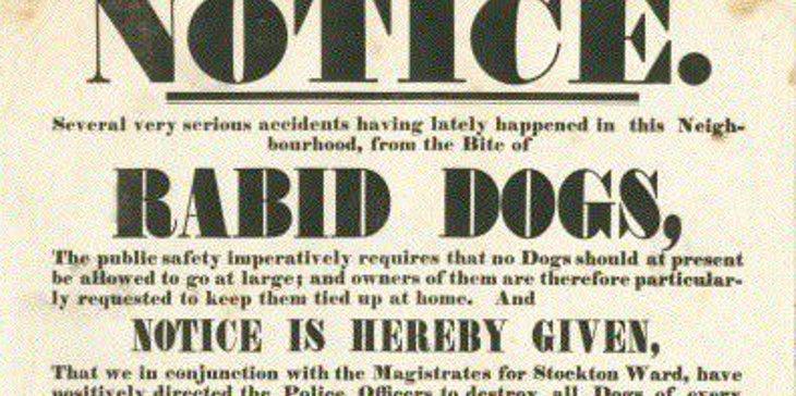 rabiddogs.jpg