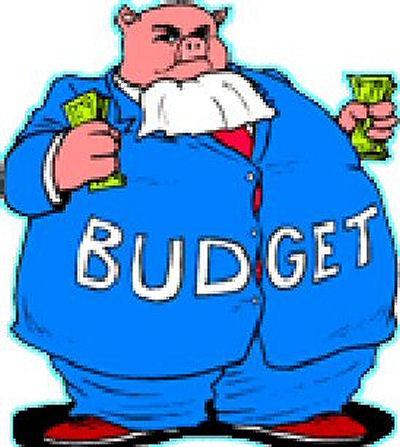 budgethog.jpg